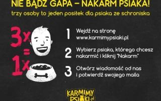 KP_karmienie