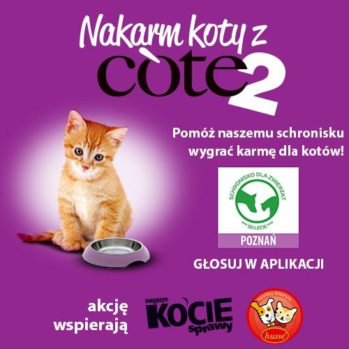 Nakarm koty z Cote