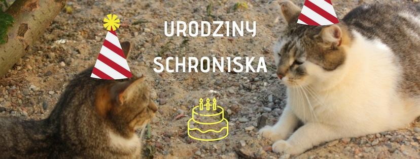 Zapraszamy na nasze urodziny