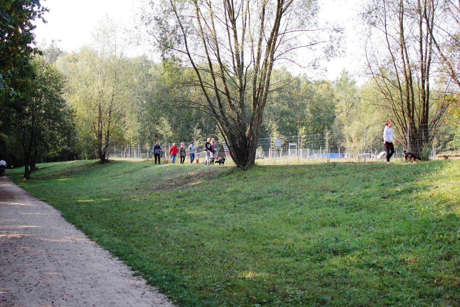 Wrześniowy spacer z psami