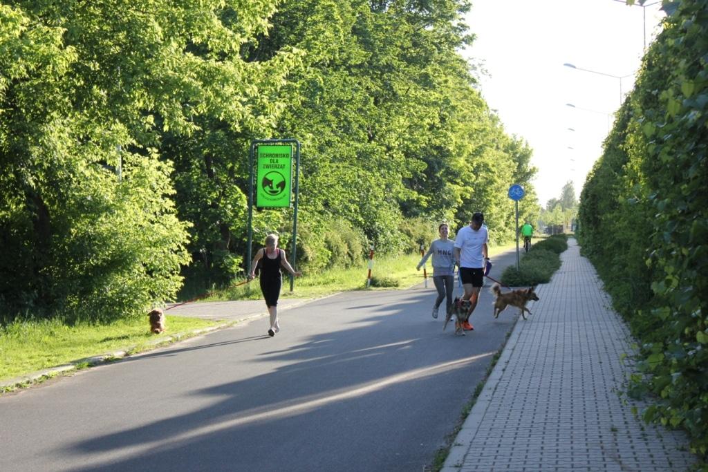 4 km dla 4 łap pobiegane!